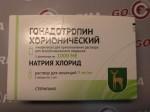 Гонадотропин Хорионический (цена за 1 флакон 1000ед+растворитель) купить в России